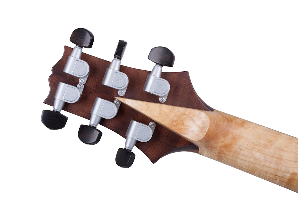 Custom E-Gitarre Guitar Zeus Fire Salamander