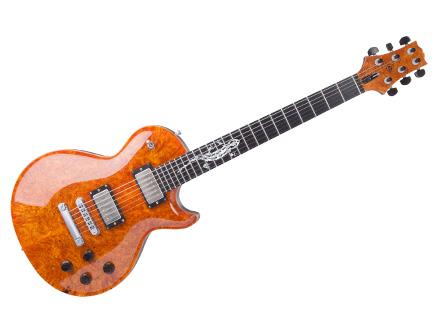 Custom E-Gitarre ZEUS Fire Salamander